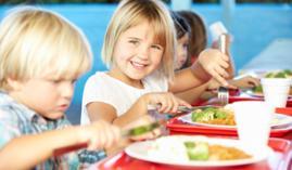 Formación A distancia Profesional Alimentación Materno-infantil