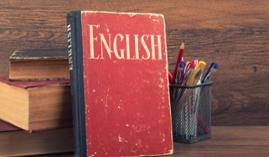 Inglés Profesional  A distancia