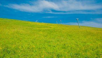 Curso Gratuito Máster en Medio Ambiente y Gestión Sostenible (Online)