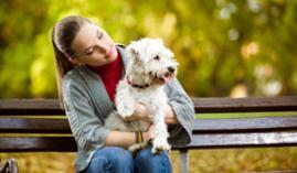 Técnico Profesional en Psicología, Educación y Adiestramiento Canino